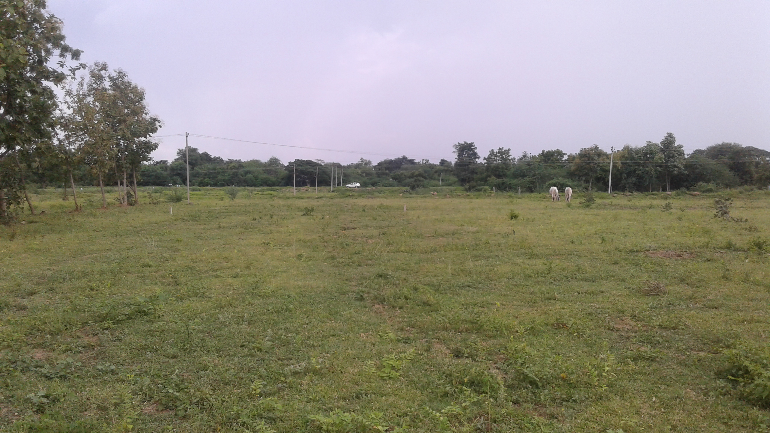 Kapil Homes Thorur Site Images