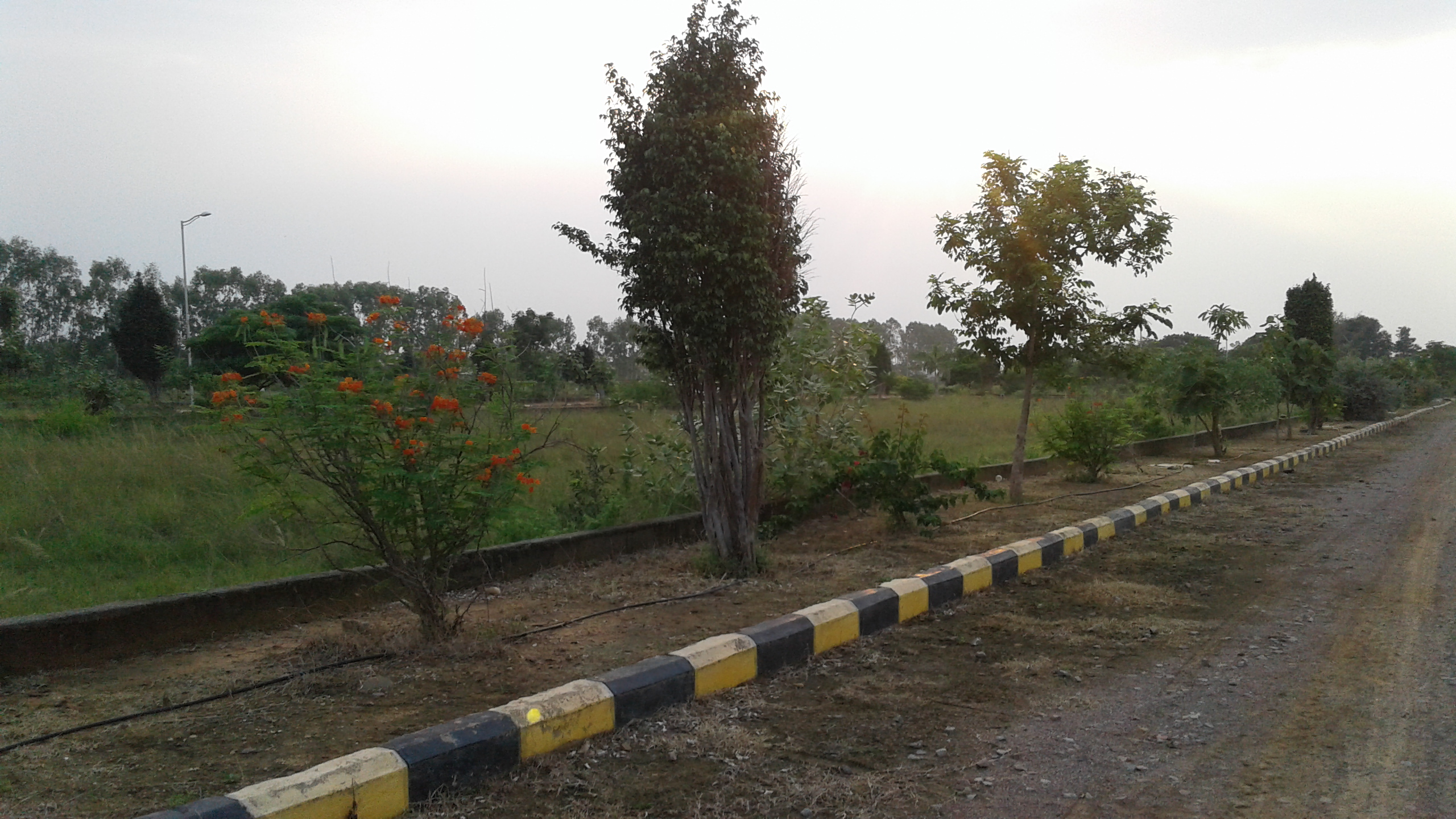 Kapil Homes Bhoopalpally Site Images