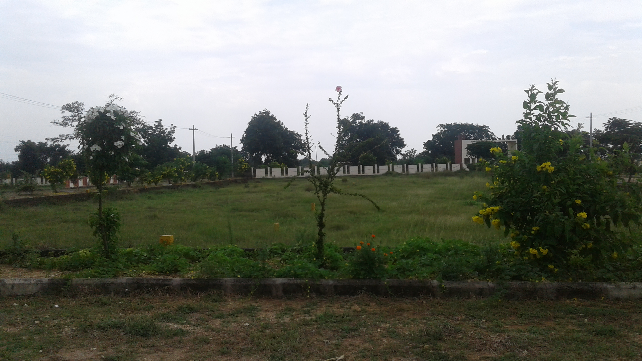 Open Plots For Sale In Thorrur Warangal Residential Land